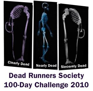 DRS 100-Day Challenge Shirt